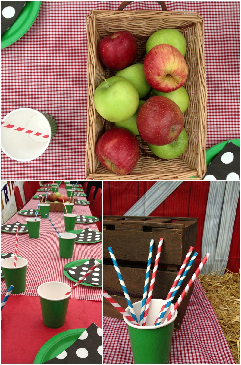 Childrens Farm themed party